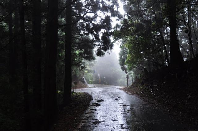 画像: 神々しい雰囲気で幻想的な峠。和歌山県・コカシ峠