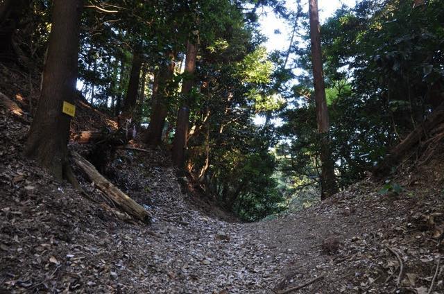画像: 豊臣秀吉によって開かれた宇津ノ谷峠