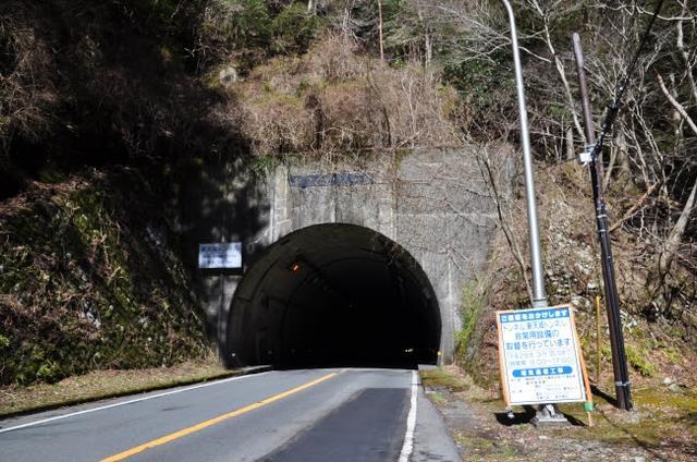 画像: 新天城トンネル