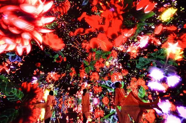 画像: Floating in the Falling Universe of Flowers planets.teamlab.art