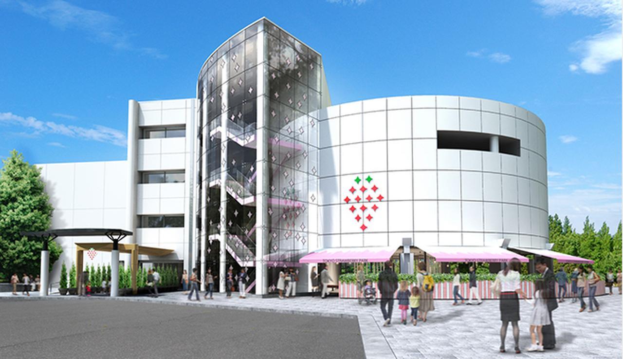 画像1: tokyo-strawberry-park.jp