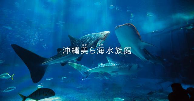 画像: 沖縄美ら海水族館
