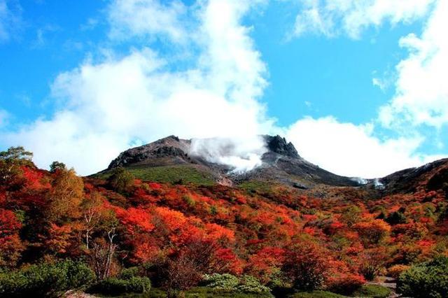 画像: 画像提供:那須町観光協会