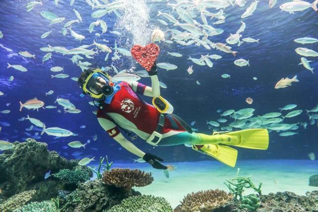 画像: 水中パフォーマンスタイム~お魚たちへプレゼント~