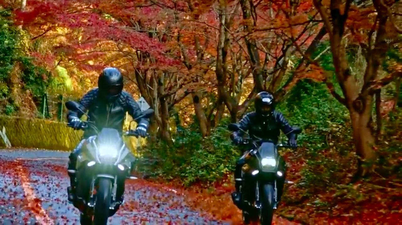 画像: めっちゃ紅葉しているから、やっぱり昨年の秋に撮影したんでしょうね・・・。 www.youtube.com