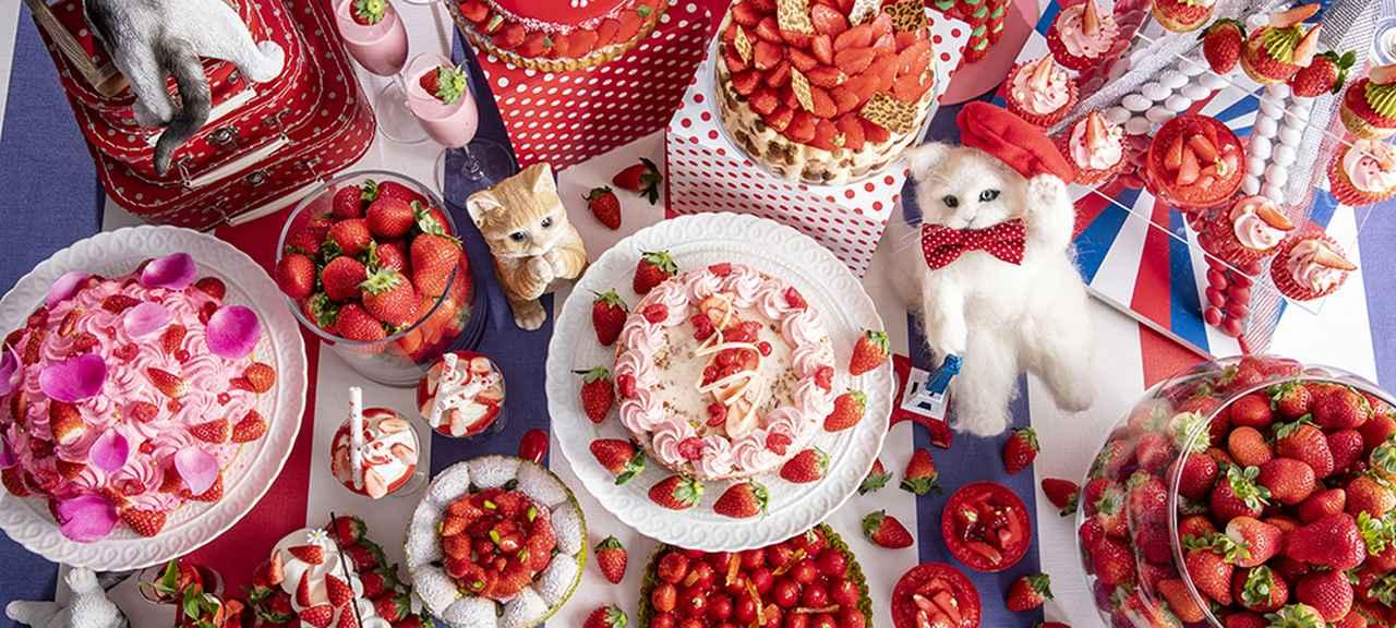 画像: 甘酸っぱいいちごデザート×にゃんこの世界!マーブルラウンジ「ストロベリーCATSコレクション」 | 東京・新宿のホテルなら【ヒルトン東京】