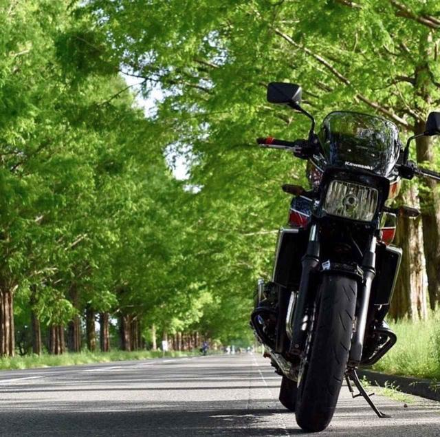 画像: 並木道にカワサキZRX1200 DAEG現る!【グラカワインスタ紹介Vol.14】 - LAWRENCE - Motorcycle x Cars + α = Your Life.