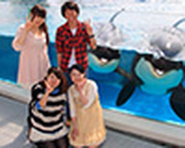 画像: <公式>鴨川シーワールド-東京・千葉の水族館テーマパーク