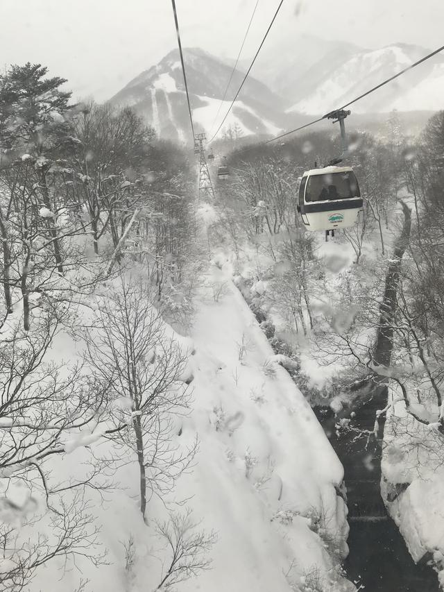 画像: 長野県 栂池高原スキー場にて