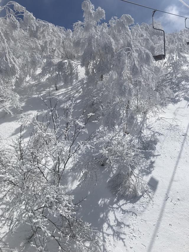 画像: 長野県 斑尾高原スキー場にて