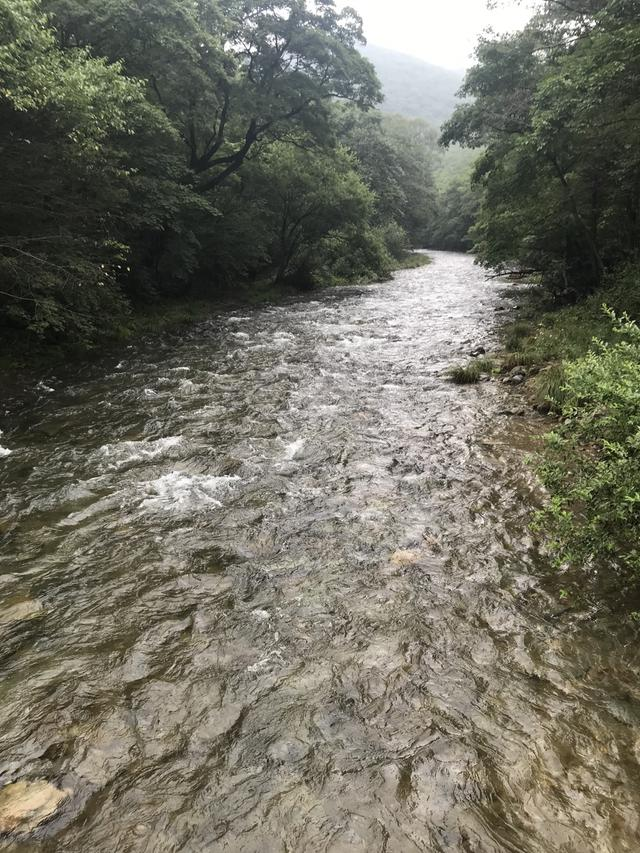 画像: 公園内には美しい森のなか、いくつもの渓流が流れています。釣り好きの堀内さんは「うわぁ〜釣りしてぇ!」と目を輝かせていましたが、もちろんしていませんよ!! (笑)。