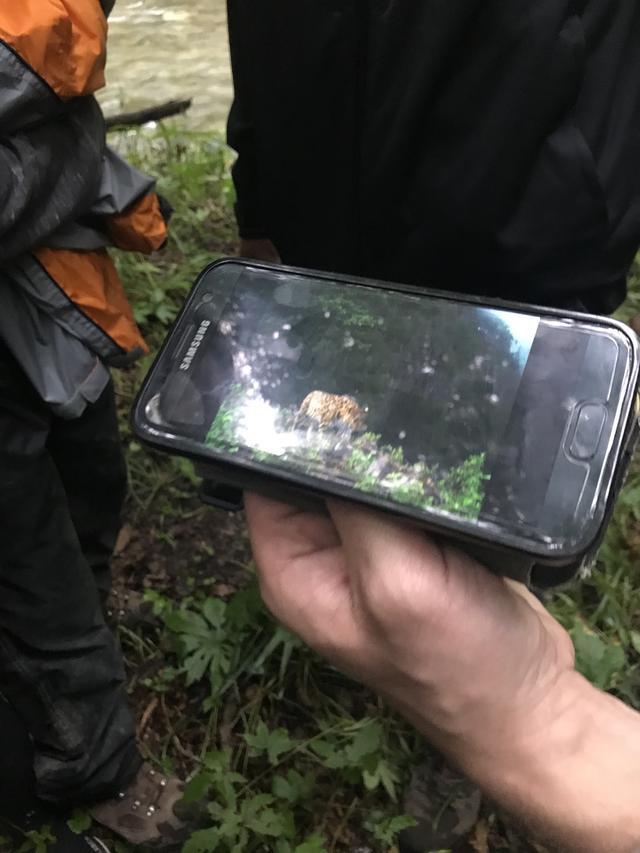 画像: 残念ながら、今回は野生のトラやヒョウに会うことはできませんでした・・・。やっぱり人数が多いと、彼らも警戒するので・・・とのことです。なおどのように個体数を把握しているのかというと、公園内各所に配置した450台のカメラでチェックしているとのこと。トラもヒョウも個体ごとに柄が違うので、100%判別することができるのだそうです。
