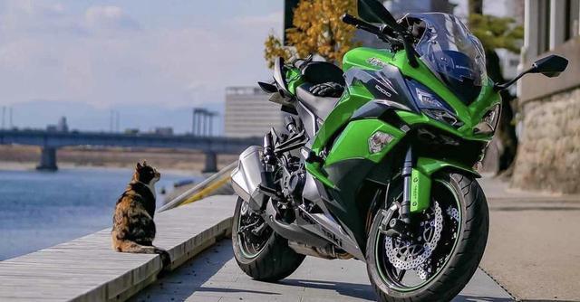 画像: 猫好き悶絶神ショット♡カワサキ Ninja1000【グラカワインスタ投稿紹介vol.46】 - LAWRENCE - Motorcycle x Cars + α = Your Life.