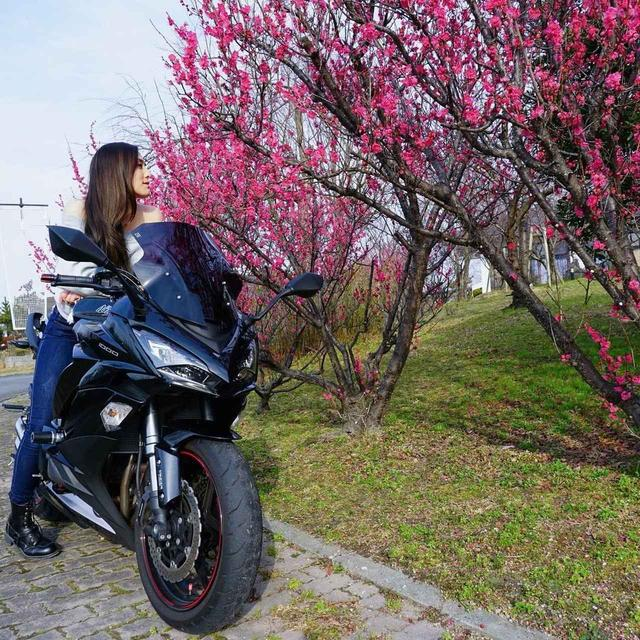 画像: 美しい…!カワサキ Ninja1000【グラカワインスタ投稿紹介vol.50】 - LAWRENCE - Motorcycle x Cars + α = Your Life.