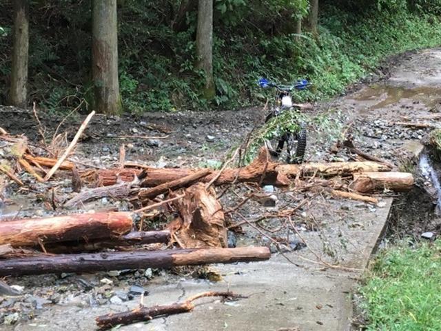 画像: 「日野カントリーオフロードランド」のウッズコースは、このように倒木などや道の損壊などで利用できない状態が続いております・・・。 hinocountry.exblog.jp
