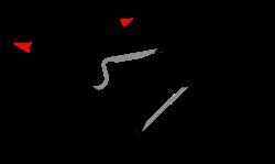 画像: en.wikipedia.org