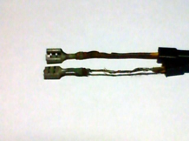 画像: 【パンタ600の配線(オルタネーターからの線、レギュレーターへの端子部分)もしっかり腐れてました(涙)】