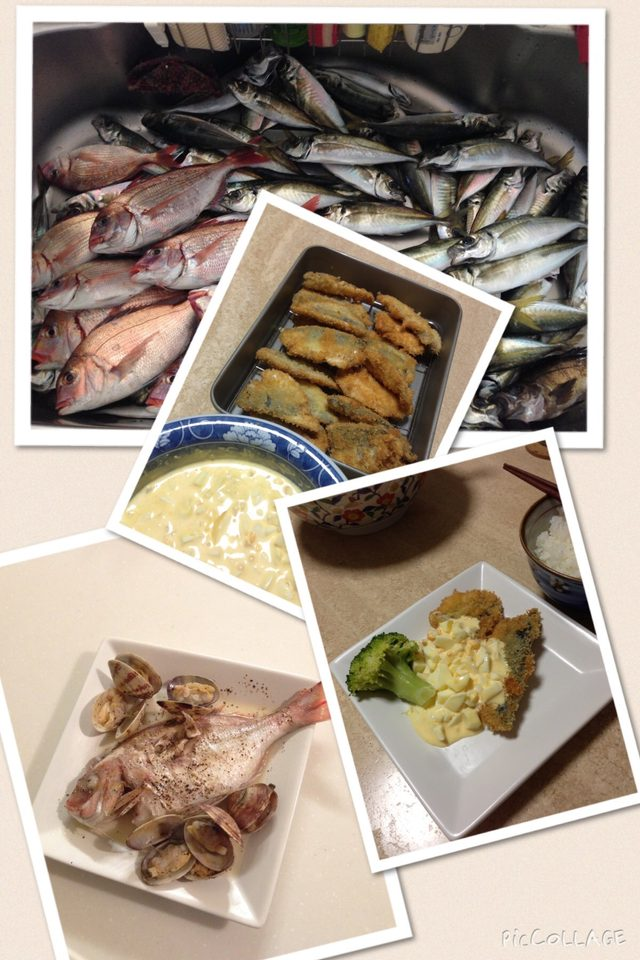 画像3: Catch and Eat!!