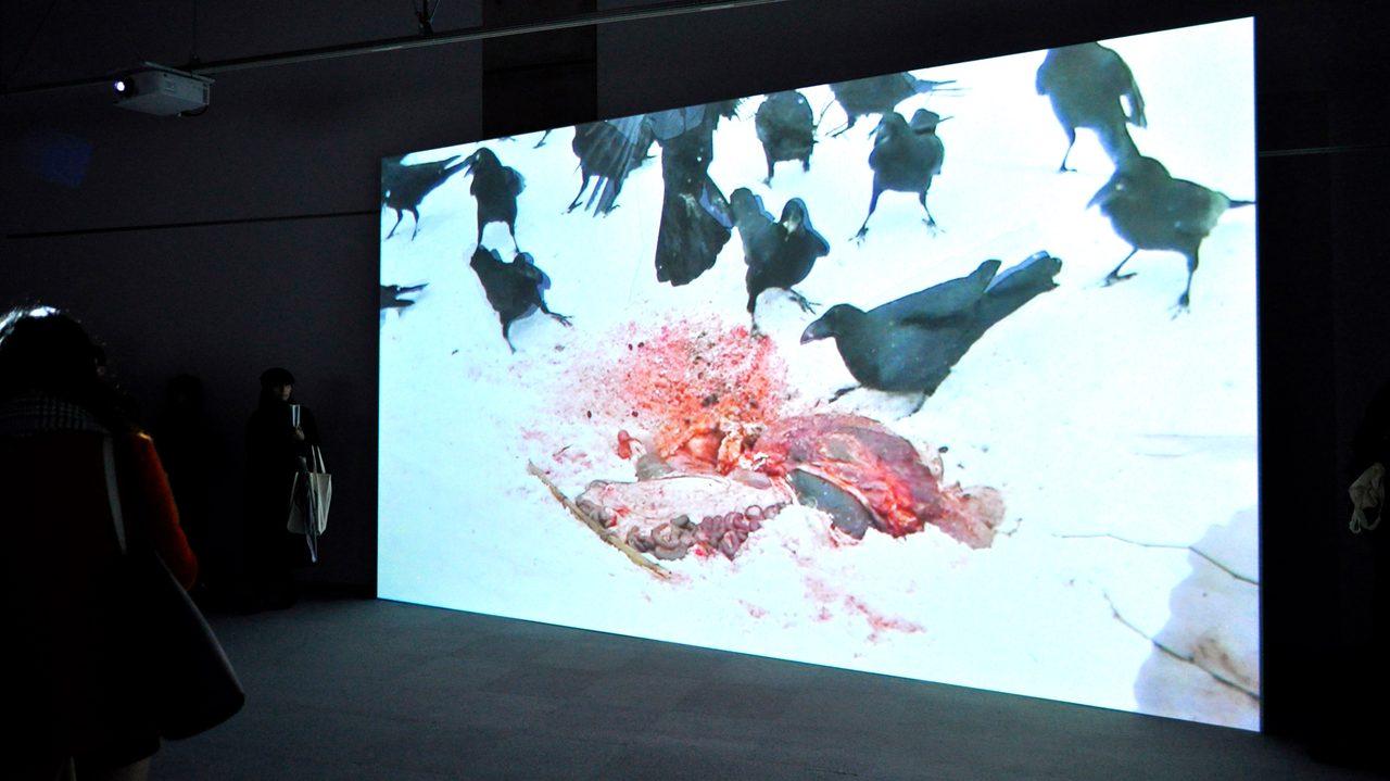 画像: 人間の野性に迫るーホンマタカシの映像:《最初にカケスがやってくる 2015》第7回恵比寿映像祭