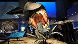 画像: ウミサソリをいまにもカブリつきそうなダンクルオステウス