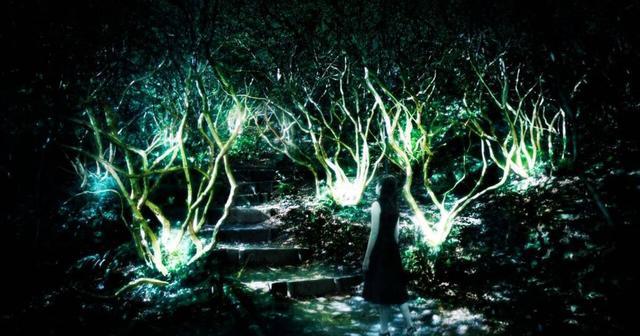 画像: チームラボ、50万平米の大庭園で光の祭「かみさまが住まう森のアート展」開催!