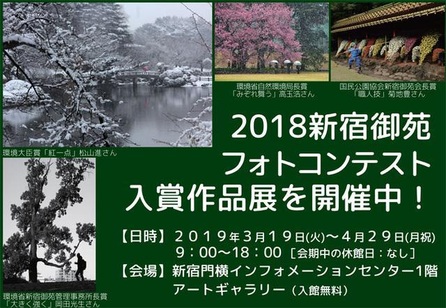 画像: 新宿御苑 | 一般財団法人国民公園協会