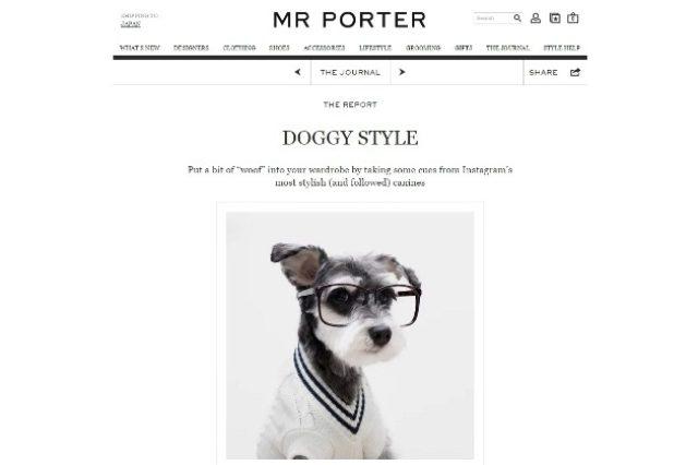 画像: ECサイト「MR PORTER」がインスタグラムで人気の犬をモデルに起用