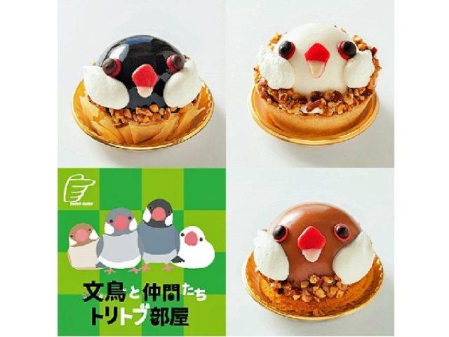 画像: 文鳥ケーキが3種類そろってコンニチハ!見つめられると食べるのをためらってしまう?!ほどの可愛さ