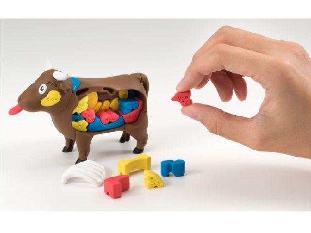 画像: 焼き肉屋さんで役に立つ!?楽しく肉の部位を学べる理科室の模型復元パズル「ウシ」登場