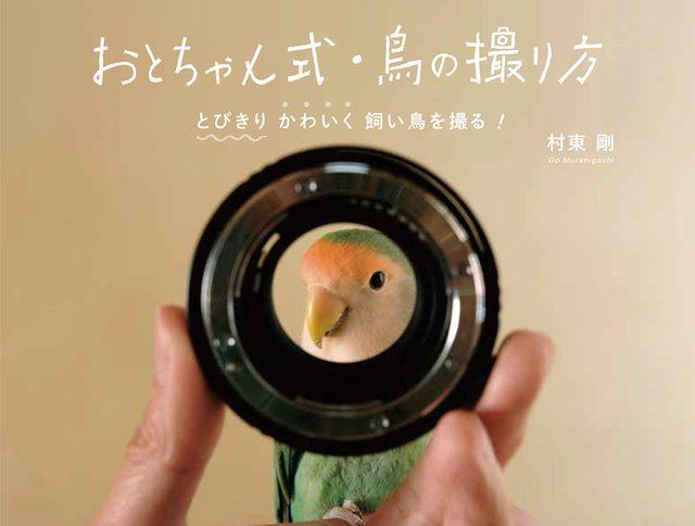 画像: pie.co.jp