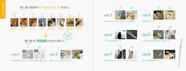 画像: 第1章で基本の『7つのステップ』を学び、第2章の『実践編』でさらに詳しく。