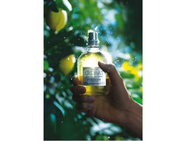 画像: ロクシタンに地中海のレモンの原種を使った力強く大人の個性を感じるトワレなど新メンズシリーズが登場