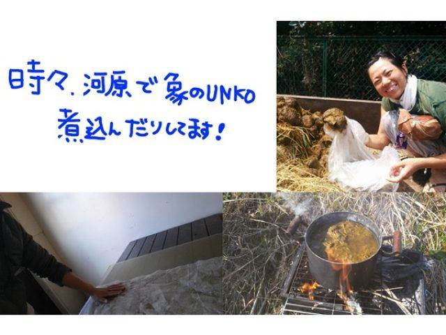 """画像: 満を持して東京で初開催!象の""""糞""""を使ったアート展「象×UNKO=Artあ~と展」"""