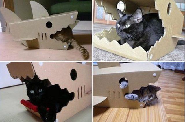 画像: 危機感ゼロ!?ジョーズの口で寛ぐにゃんこが可愛い猫ハウス