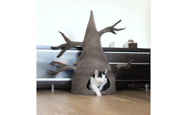 """画像: 似てるから落ち着く!?トトロみたいな""""猫耳ハウス""""にほっこり"""