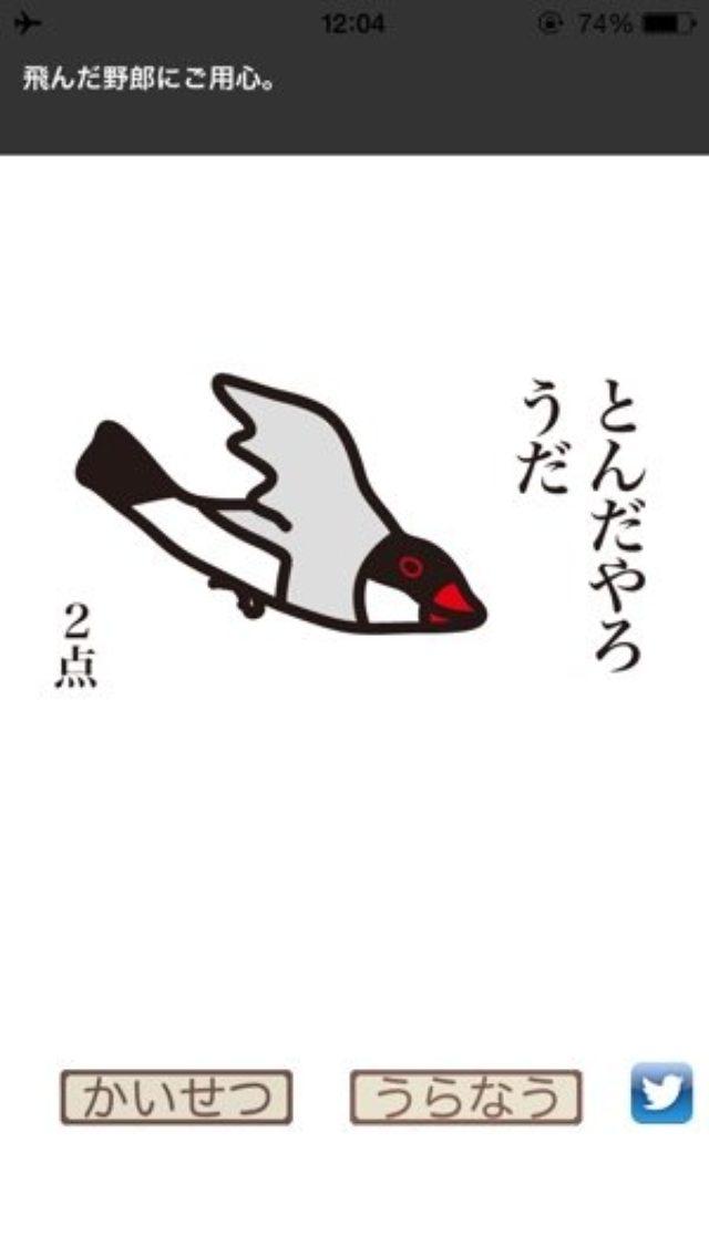 画像: 占うたびにドッキリ!文鳥さんが結果を運ぶちょっとシュールな『文鳥点取り占い』