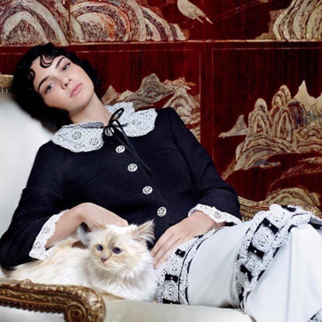画像: ケンダル・ジェンナー、カール・ラガーフェルドの愛猫と共演。