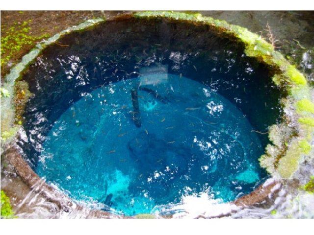 画像: こんなキレイな水は見たことがない!!一度は訪れたい日本の湧水・名水ランクに熊本の水源が1・2位を独占