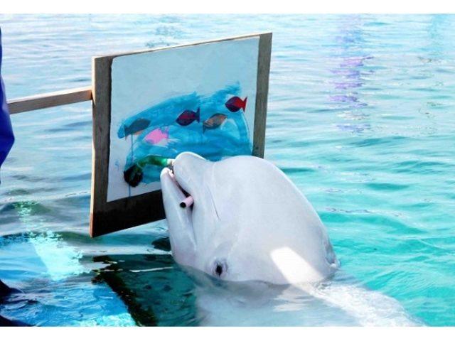 画像: 白イルカ画伯やハロウィン企画、そして花火ショー!秋もやっぱり八景島シーパラダイスが楽しい!!