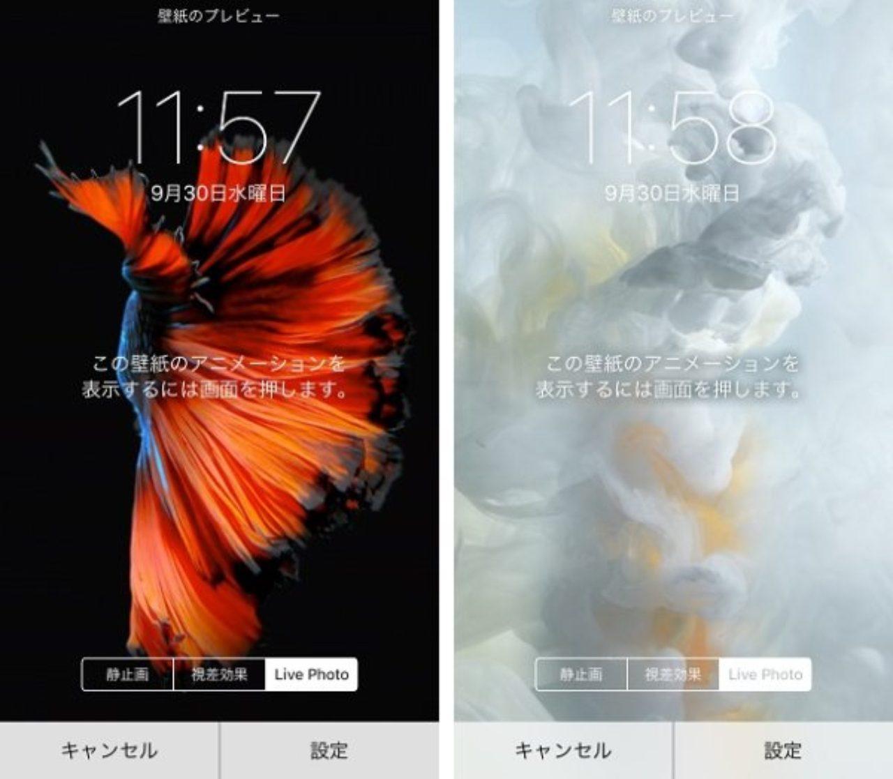 Iphone6s 動く 壁紙 最高の無料壁紙 Hd