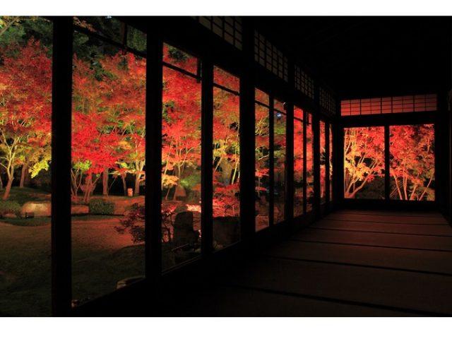 画像: 日本夜景遺産に認定!悠久の歴史が幻想的な光に包まれる「博多ライトアップウォーク博多千年煌夜」今年も開催