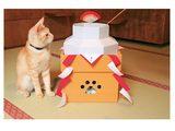 画像: 猫好きなら、今年の年賀状の題材はこれにする?猫鏡餅セットにネコまっしぐら!!