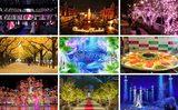 画像: 今週末のおすすめ東京イベント10選(11月28日、29日)