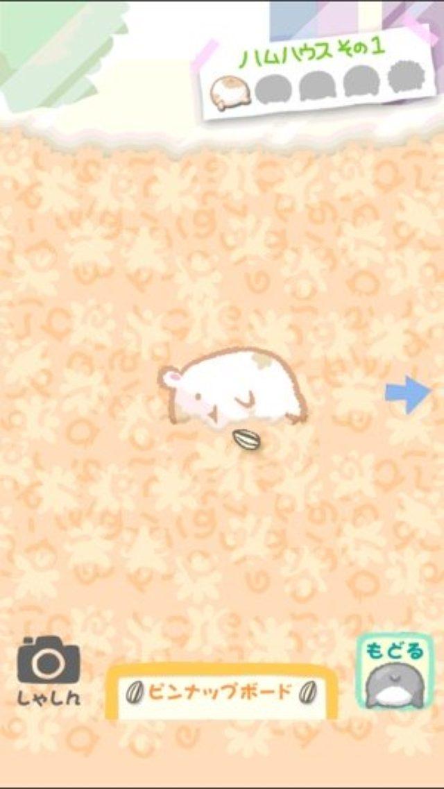 画像: ハムのキュートなおしりに悶絶♡ハムケツだらけのパズルゲーム!