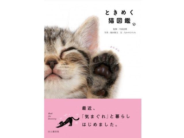 画像: 部屋に置いておくだけでウレシイ!2月22日(猫の日)発売の、心ときめく新感覚の猫図鑑とは?