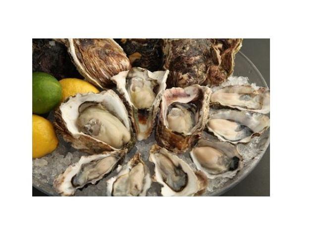 画像: 生牡蠣が全7種類1ピース300円のバリュープライス!シャンパンとともに牡蠣の食べ比べはいかが?