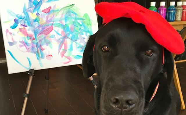 """画像: NYの最新アートはこれ!?絵画を描く""""ワンコ画伯""""がすごい!"""