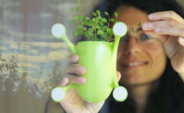 画像: 狭いお部屋でも観葉植物を飾りたい☆窓にペタッと貼れるプランターが便利