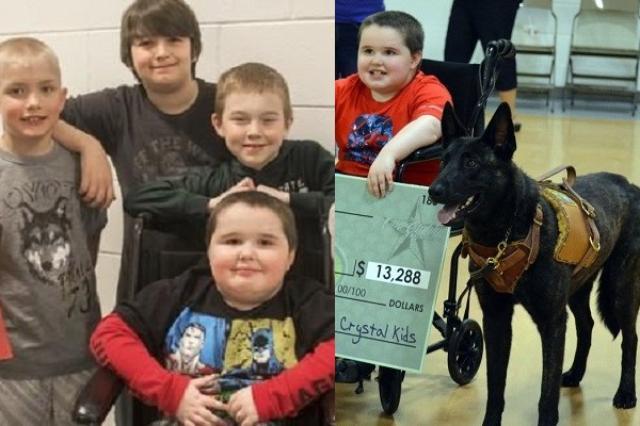 画像1: アメリカ・ミシガン州の小学校で、筋ジストロフィーの友だちに介助犬を贈った子どもたちが話題になっています。 介助犬を手に入れる費用がなく... 9歳のメイソン・バーンズ君は筋ジストロフィーのため、歩いたりすることができません。 誰かが常についていなければならない状態だったので、家族は介助犬を望んでいたそうです。 ただ問題はそのための費用がないこと。 介助犬を手に入れるにはトレーニングや獣医の支払いなど相当な費用がかかるのだそうです。 子どもたちと先生が募金活動 それを知ったクラスメートとティファニー・ライアン先生がメイソン君に介助犬を贈るために募金活動を始めました。 この活動がメディアにも取り上げられ、1万3,000ドル以上が集まったそう [...] irorio.jp
