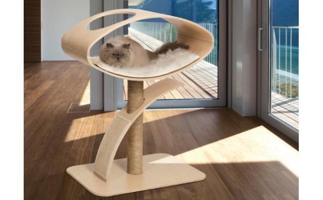 画像: いい眺めだにゃ♪アートなキャットハウスで愛猫がセレブに変身!?